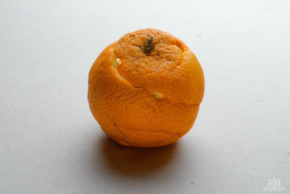 empty-fruit